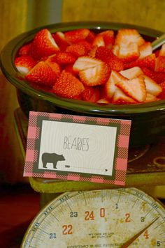 """The Howard Family Blog: Sawyer's """"We're Going on a Bear Hunt"""" Party"""