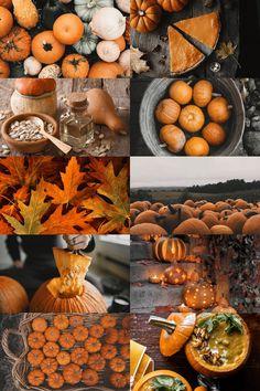 Autumn and pumpkins