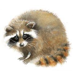 Bébé raton laveur aquarelle animaux - impression jet d'encre - décoration murale - Illustration à l'aquarelle raton laveur - Woodland