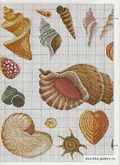 Cross Stitch Shells Pattern