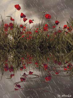 red poppies in the rain animation gif Walking In The Rain, Singing In The Rain, Rainy Night, Rainy Days, Rain Gif, Rain Pictures, I Love Rain, Spring Shower, Sound Of Rain