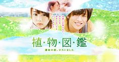 Just Watched: Evergreen Love Sweet Love Words, Love Is Sweet, Cute Love, Love Movie, Movie Tv, All That Heaven Allows, Evergreen Love, Romantic Words, Foreign Movies