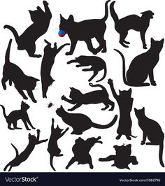 Cat and Kitten Silhouette Set - Silhouettes of cats and kittens playing, Cat Silhouette, Silhouette Vector, Kittens Playing, Cats And Kittens, Cat Whisperer, F2 Savannah Cat, All About Cats, Buy A Cat, Cat Tattoo