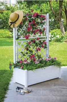 Italia è la fioriera da esterni modulare, disponibile quadrata o rettangolare, in antracite, marrone, verdone o bianca. La versione con la griglia è particolarmente adatta alle piante rampicanti.