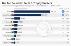 #trophyhunters - U.S. authorities have stated their intention to lift restrictions on imports of elephant and lion trophies from Zimbabwe and Zambia, leading to public uproar. A U.S. Fish and Wildlife Service spokesman attempted to justify the plan by saying that both African countries would be able to use the much-needed revenue from U.S. hunters for conservation purposes. The president changed his mind on the issue at the weekend, indicating that he is skeptical trophy hunting can help the…