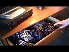 How to organize SCARVES   #scarves #organize #homeremedies Ways To Wear A Scarf, How To Wear Scarves, Organize Scarves, Homemade Scarves, Scarf Organization, Head Scarf Styles, Home Remedies, Home Health Remedies, Natural Home Remedies