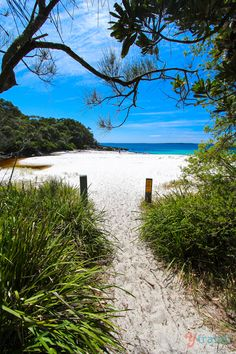 The Sensational White Sands Walk in Jervis Bay The White Sands of Jervis Bay, Australia Jervis Bay Australia, Sydney Australia, Australia Beach, Australia Winter, Coast Australia, Dream Vacations, Vacation Spots, Places To Travel, Places To See