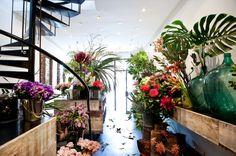MR COOK - Sydney Design Awards