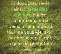 """La Bible - Versets illustrés - Matthieu 6:30 - Paroles de Jésus  """"Et pourquoi vous inquiétez-vous au sujet des vêtements? Observez comment poussent les fleurs des champs: elles ne travaillent pas, elles ne se font pas de vêtements. [...]. Dieu habille ainsi l'herbe des champs qui est là aujourd'hui et qui demain sera jetée au feu: alors ne vous habillera-t-il pas à bien plus forte raison vous-mêmes?"""""""