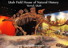 51 Cent Adventures: Utah Field House of Natural History State Park Museum - Vernal, Utah