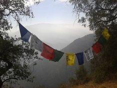 banderas de oración tibetana (lung ta)
