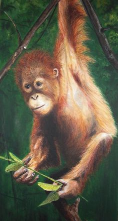 Orangutan by Artist Judy Dickinson, UK