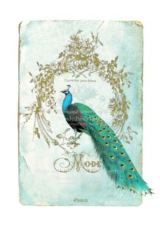 French Peacock Art Print Ouvre tes yeux bleus (Open Your Eyes) by CafeBaudelaire
