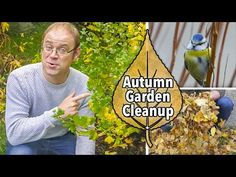 How to keep your garden looking great and in good health over winter. Save Our Earth, Garden Planner, Tidy Up, Autumn Garden, Clean Up, The Past, Wildlife, Nature, Youtube