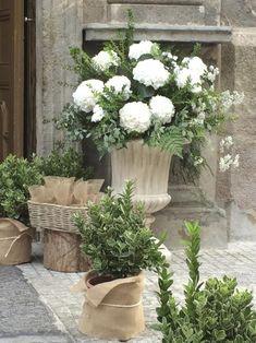 Weddings | Nana London Wedding Flower Arrangements, Floral Arrangements, Chic Office Decor, Simple Elegant Wedding, Floral Wedding, Wedding Flowers, Ideas Para Fiestas, Church Wedding, Container Gardening