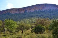 South African Travel Digest: Some Amazing Reasons to visit Magaliesburg