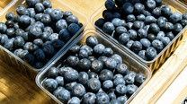 Give Berries a Hot Water Bath to Prevent Mold Growth