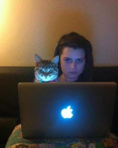 Like Master Like Cat: Soon.