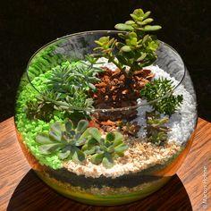 Recebi uma encomenda para fazer um terrário em estilo mini jardim num vaso tipo aquário. Tive a ideia de começar com a areia colorida em camadas, para depois colocar os pedriscos e a terra, como de…