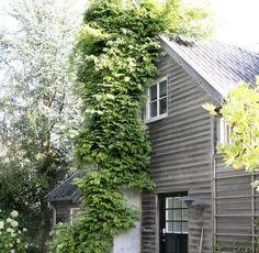 Vor 20 Jahren kauften die Lynggaards das ehemals rosa Holzhaus einer Schauspielerin ab.