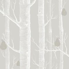 Woods Wallpaper by Cole and Son Whimsical range, enchanting woodland with silver birch trees, Powder Blue Wood Wallpaper, Wallpaper Roll, Silver Birch Wallpaper, Closet Wallpaper, Playroom Wallpaper, Bedroom Wallpaper, Wallpaper Decor, Kids Wallpaper, Cole Son