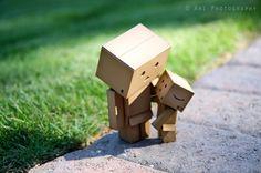 Danbo/corrugated cardboard