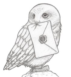 Find the desired and make your own gallery using pin. Barn Owl clipart harry potter owl - pin to your gallery. Explore what was found for the barn owl clipart harry potter owl
