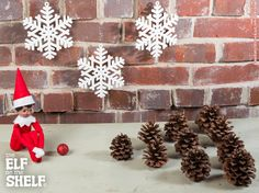 Pine cone Bowling | Elf on the Shelf Ideas