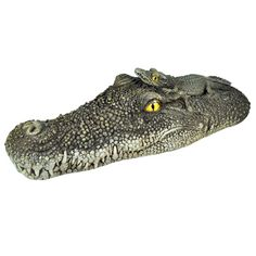 """Poolmaster Crocodile Head 20.5""""    Float it in the pool or put it in a garden or planter."""