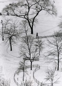 André Kertész: Washington Square, New York, 1954