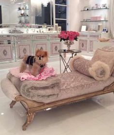 """GIGGY, LISA VANDERPUMP'S DOG The """"Real Housewives of Beverly Hills"""" star has a Pomeranian that eats off a silver tray and drinks his water out of Baccarat crystal. Even Paris Hilton's dogs are like, """"Man, this clown hound is spoiled."""" - Mom.me"""