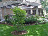 Pergola and bluestone patio.