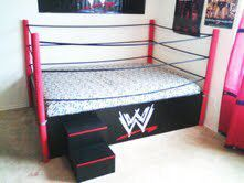 A wrestling ring bed? No one would sleep..just play :P   My Dream ...