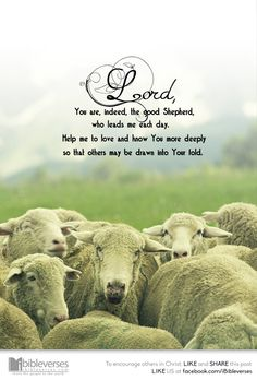 The Good Shepard Now Faith Is, Word Of Faith, Walk By Faith, Word Of God, Lord Is My Shepherd, The Good Shepherd, Prayer Verses, Bible Verses, Scriptures