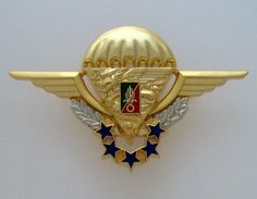 FRENCH FOREIGN LEGION - 2 REP - NUMBERED - CHUTEUR BADGE - LEGION ETRANGERE Military Insignia, Military Art, Military History, Legion 2, French Foreign Legion, Flag Patches, Paratrooper, Special Forces, Armed Forces