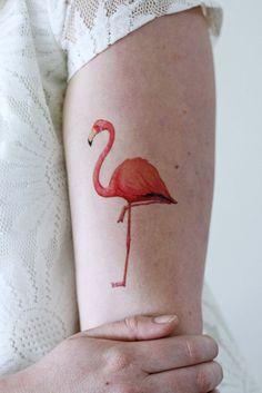 Gorgeous flamingo tattoo. The flamingo is designed to look soft and elegant as it majestically stands on one feet.