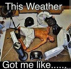 I hate summer heat.