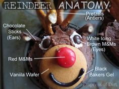 How to make reindeer cupcakes - pin this on your holiday boards