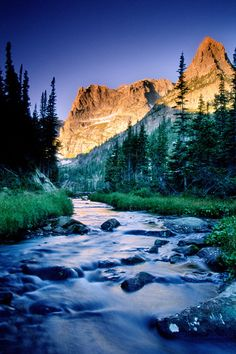 Fern Creek in Rocky Mountain National Park, Colorado; photo by Andy Cook