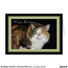 Birthday Card for a Person Who Loves Cats