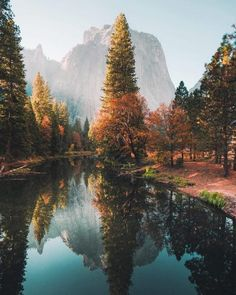 Fall colors lighting up one of the most beautiful spots in California. Each season in Yosemite is beautiful, but something about those reds and oranges makes it extra special 🍁 Shot on with lens. California National Parks, Yosemite National Park, California Travel, Yosemite California, Nature Photography, Travel Photography, Photography Tips, Photography Aesthetic, Amazing Photography