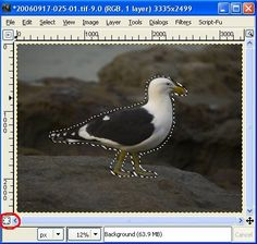 6 easy steps for removing a background in GIMP