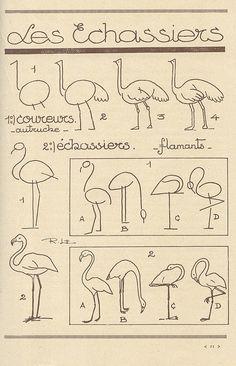 how to draw flamingos