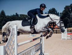 Why do you think is it essential to consider the proper suggestions in acquiring the equestrian boots to be utilized with or without any horseback riding competitors? Equestrian Boots, Equestrian Outfits, Equestrian Style, Types Of Horses, Horse Accessories, English Riding, Show Jumping, Horseback Riding, Horse Riding