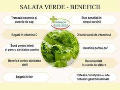 Aloe Vera, Cantaloupe, Health Fitness, Ethnic Recipes, Food, Diet, Green, Health And Wellness, Salads