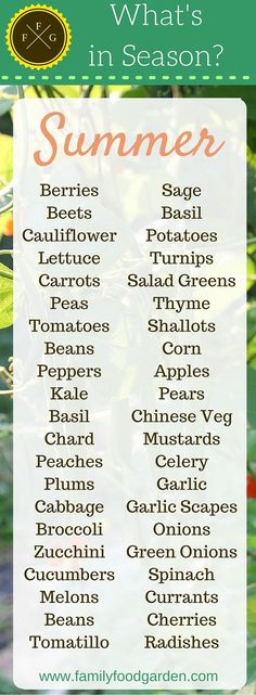 What foods are in season in the Summer