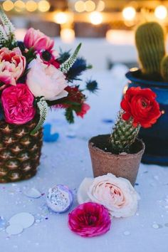 cactus plants in different containers and paired with bright flowers