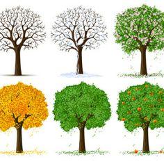 six_trees