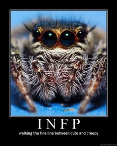 INFP; Walking the fine line between cute and creepy. Not sure if this picture is right for this statement though......
