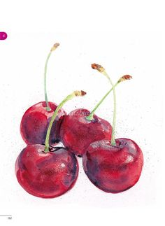 Watercolour painting of cherries Watercolor Horse, Watercolor Fruit, Fruit Painting, Easy Watercolor, Watercolor Portraits, Watercolour Painting, Watercolor Flowers, Watercolours, L'art Du Fruit